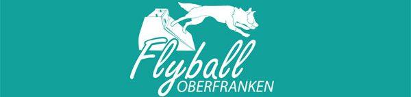 flyball-oberfranken.de